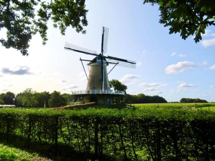 "Stellingkorenmolen ""de Windhond"" herbouwd en in 2008 in gebruik genomen Onno Wijchers © BDU media"