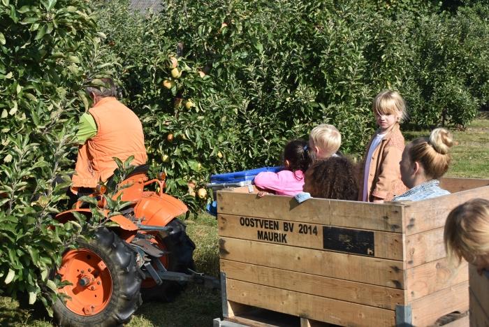 de rode appels worden geplukt. Marjan Zwart © BDU Media