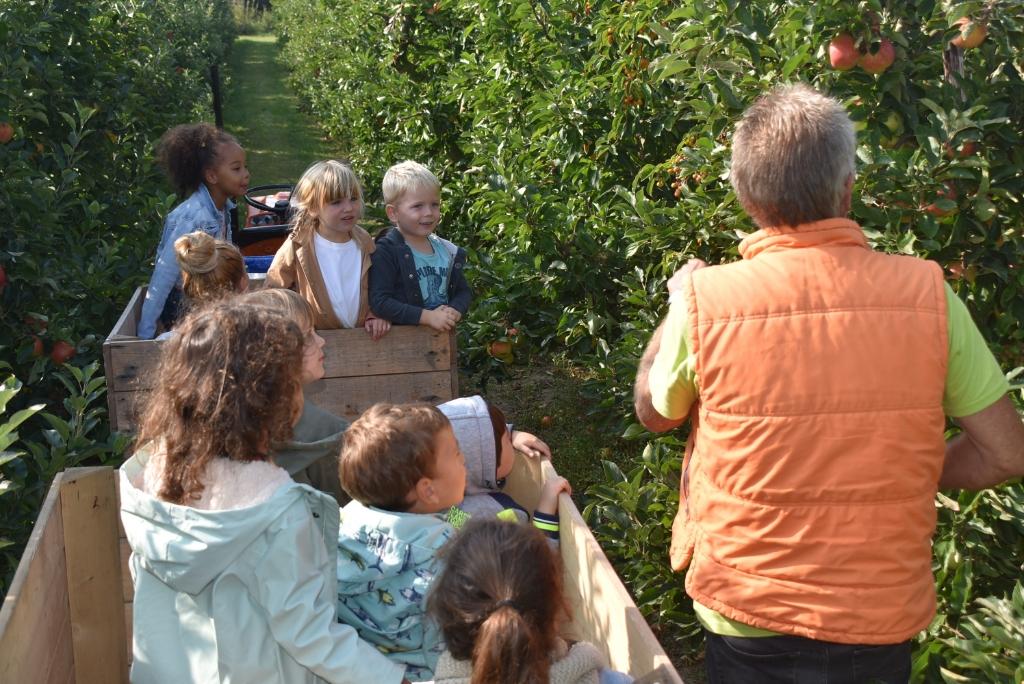 hoe pluk je appels? Marjan Zwart © BDU Media