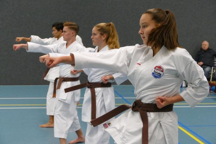 Karateka's beoefenen de basistchnieken.