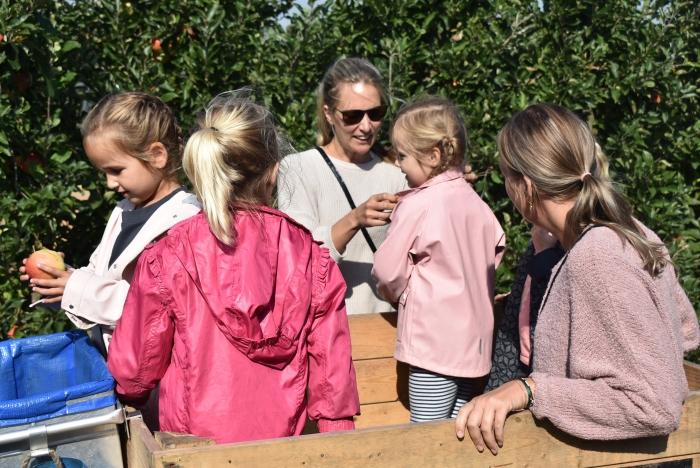 appels plukken Marjan Zwart © BDU Media