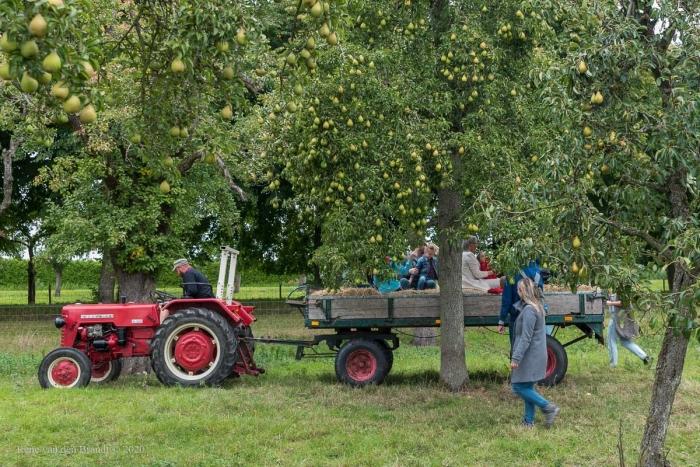 In de boomgaard René van den Brandt © BDU media