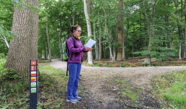 <p>Wandelknooppunt 17 bij Parc Broekhuizen in Leersum.</p>