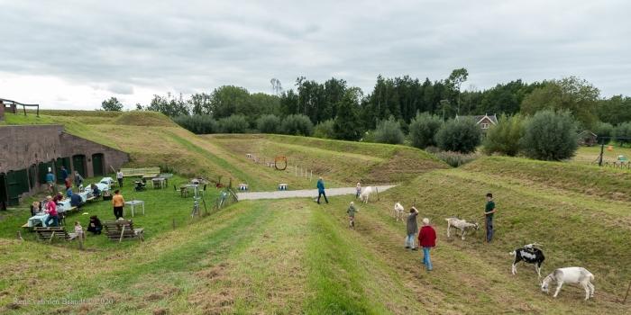 De geiten van de 'Bokkenpiloot' René van den Brandt © BDU media