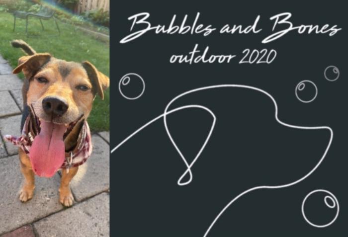 Event Bubbles & Bones