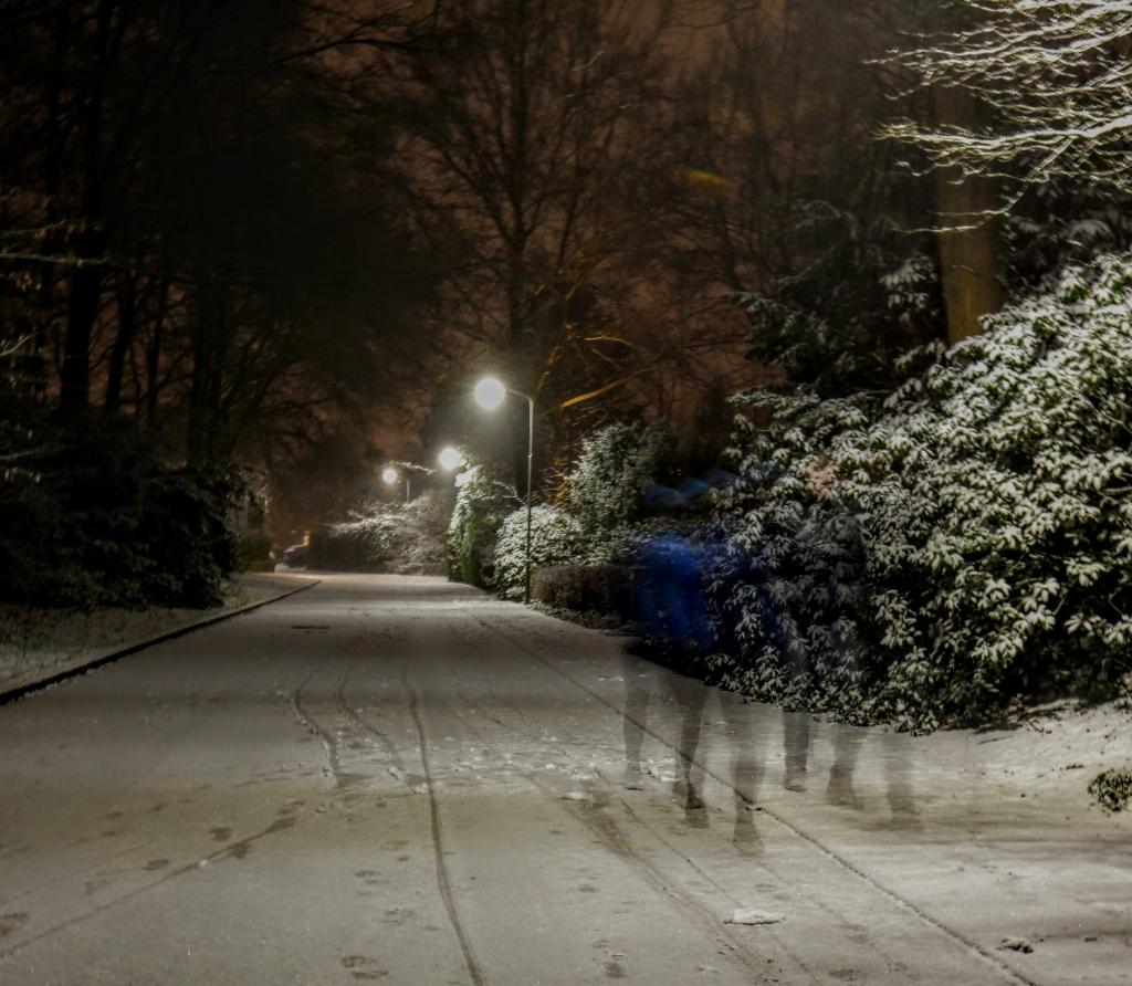 <p>Ede in de sneeuw.</p> Ellen den Boer © BDU Media