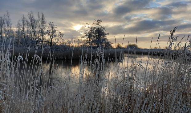 De zonsopgang in de Waver, een klein beetje winter.