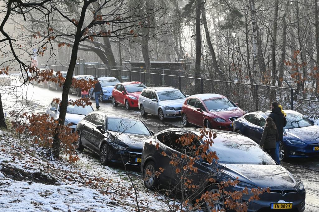 <p>Metde door de sneeuw zetten in het weekeinde veel mensen koers naar de bossen, zoals hier op De Paltz.</p> Jaap van den Broek © BDU media