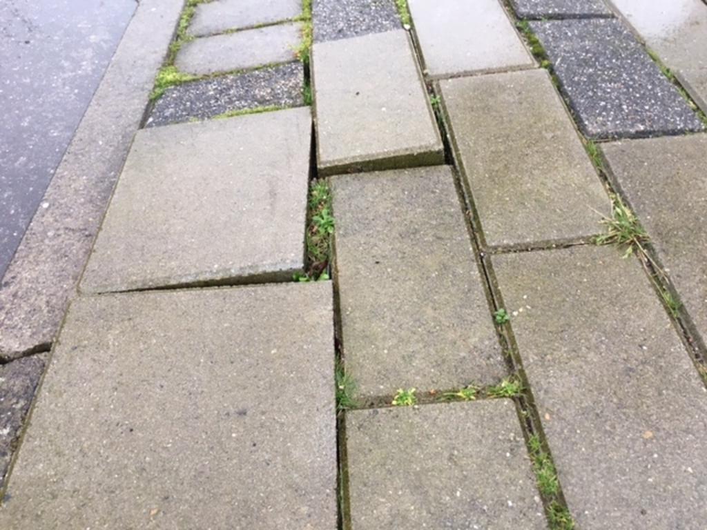 <p>Het voetpad langs het Liesbos is volgens De Vries gevaarlijk. &quot;Het ziet er in echt erger uit dan op een foto.&#39;</p><p><br></p> pr © BDU media