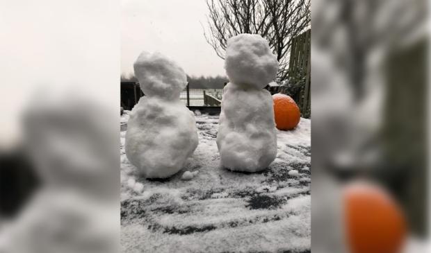 De eerste sneeuwpoppen werden vanmiddag al gesignaleerd.