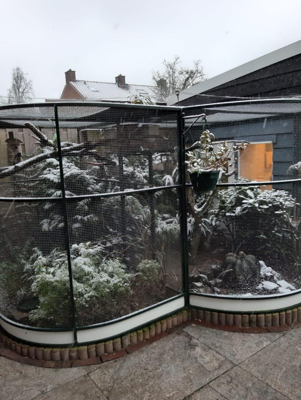 Volière in de winter v.v. Vogelvreugd © BDU media