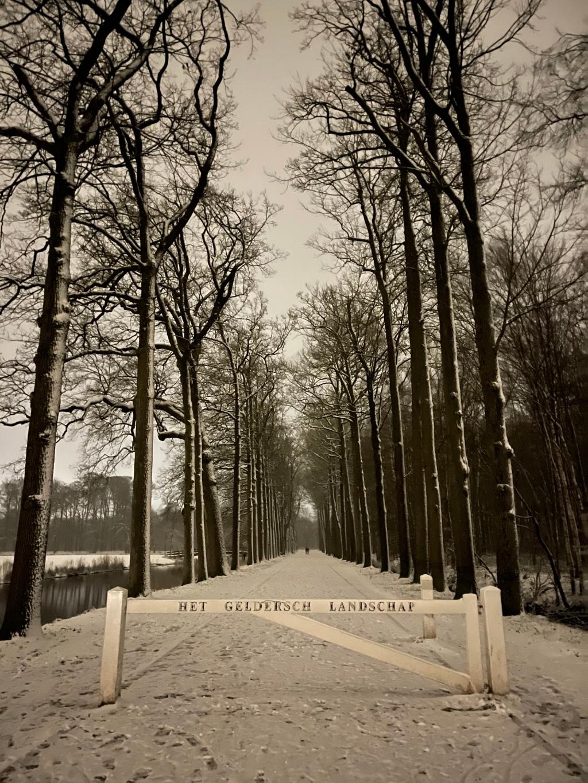 Schaffelaarse bos Tineke Slot © BDU media