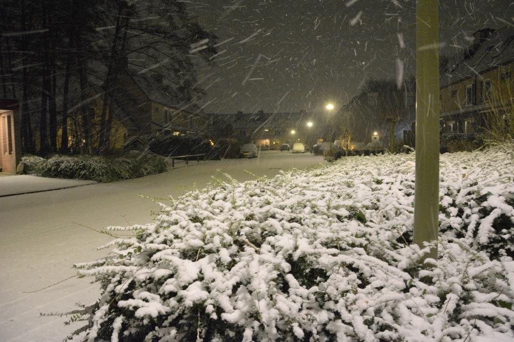 Winters op de Wethouder van Thiellaan in Barneveld Gerwin van Luttikhuizen © BDU media