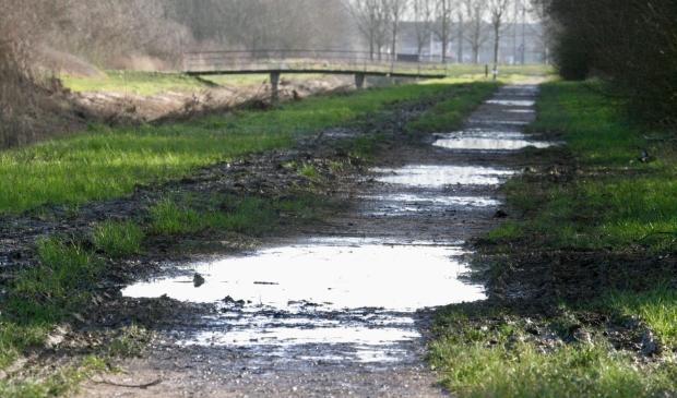 <p>Er wordt eindelijk wat gedaan aan de Venneperhout.&nbsp;</p>