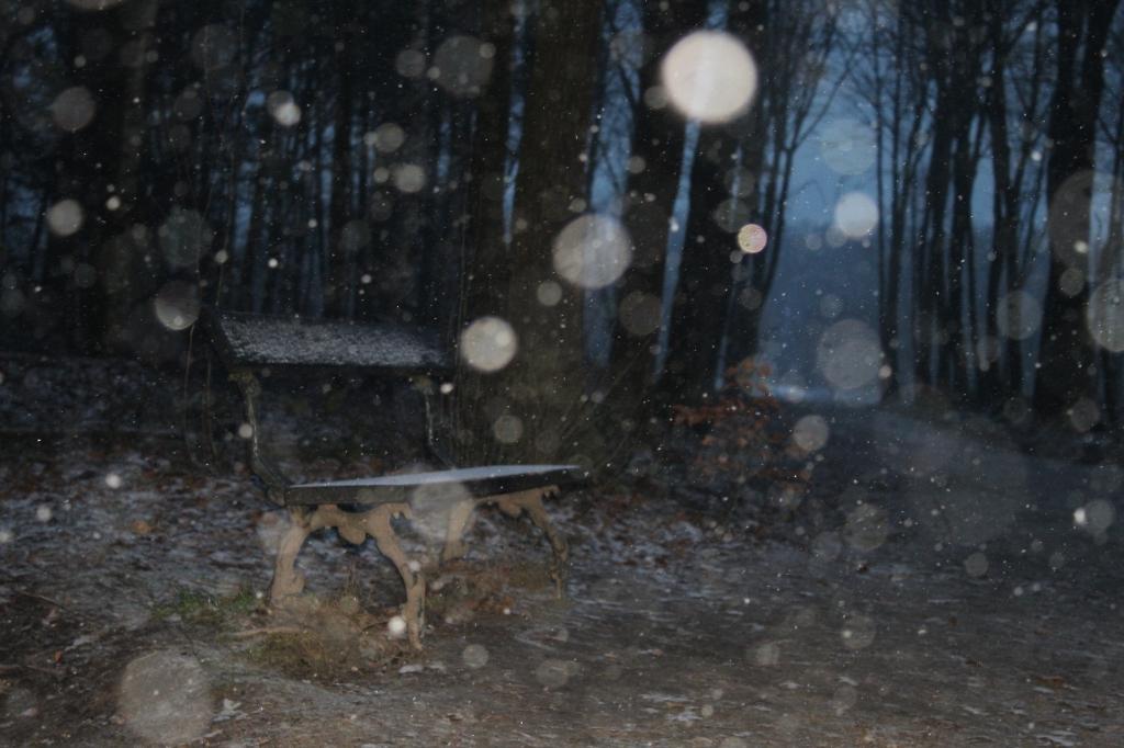 Een bankje met een laag je sneeuw  Jarne van laar  © BDU media