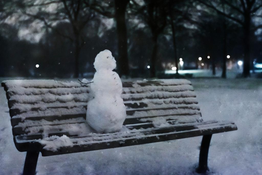 <p>Sneeuw in het Proosdijpark in Ede.</p> Romy Zuidveld/Nymphaea Fotografie © BDU Media