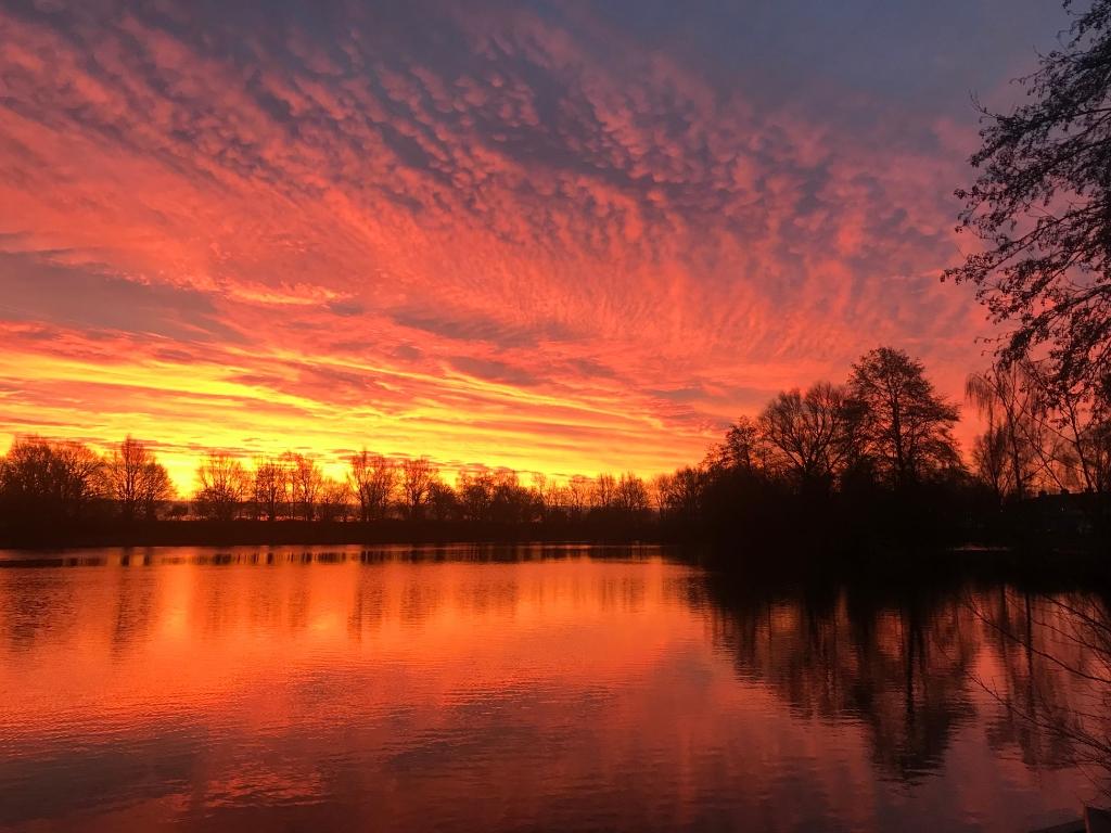 Wendy Determan maakte deze prachtige foto van de zonsondergang bij de Kooikersplas.  Wendy Determan © BDU media