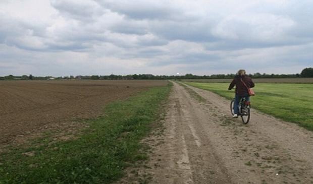 <p>Het open landschap ten westen van Odijk waar 1200 woningen zullen verrijzen</p>