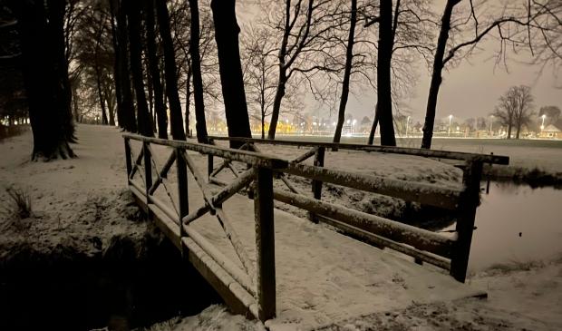 Schaffelaarse bos