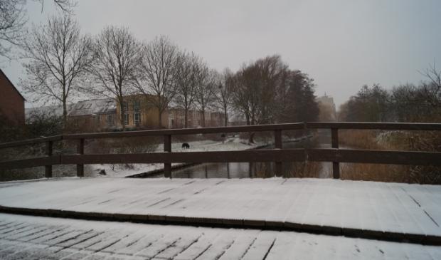 <p>Winters plaatje in Westwijk waar de sneeuw de wereld een klein beetje wit kleurde.</p>