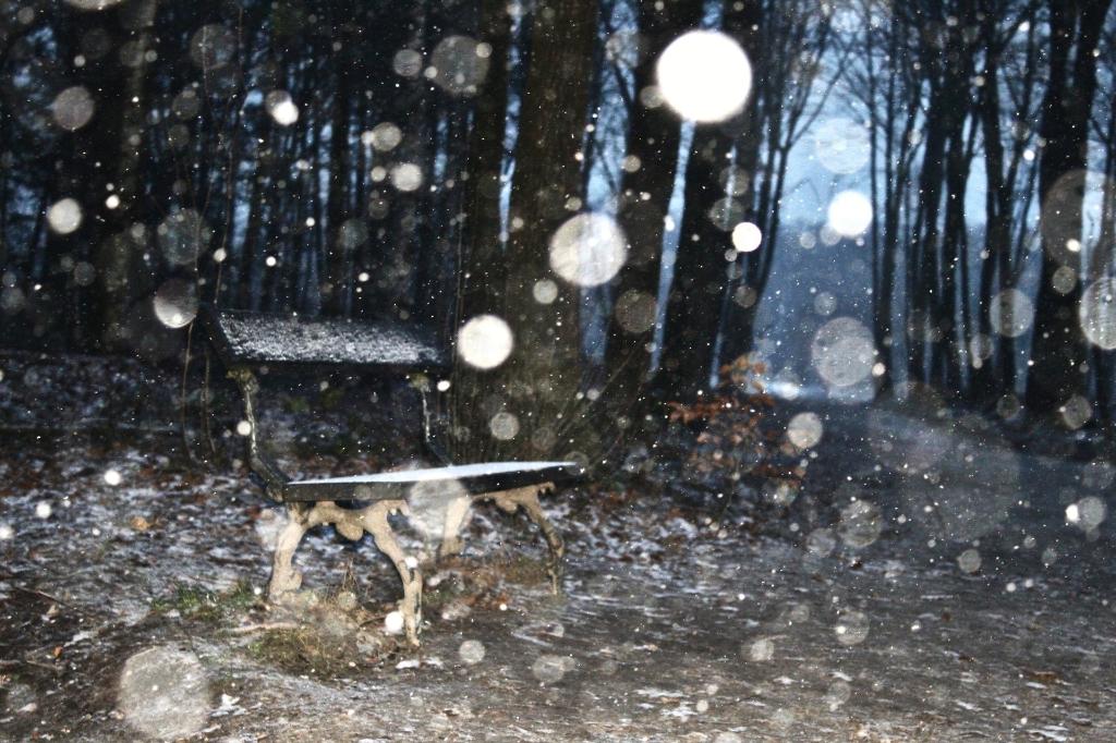 Een bankje met een laagje sneeuw  Jarne van laar  © BDU media