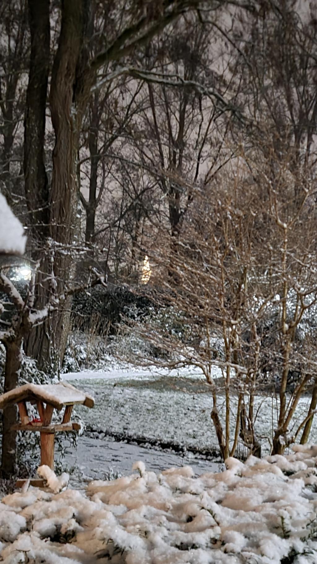 <p>,,Een winters plaatje, en wat schittert er doorheen? De mooiste&quot;, schrijft Frieda Los bij deze foto.</p> Frieda Los © BDU Media