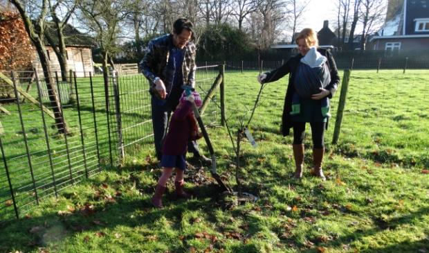 <p>De bomen werden geplant op het &#39;landje van Scholz&#39;.</p>