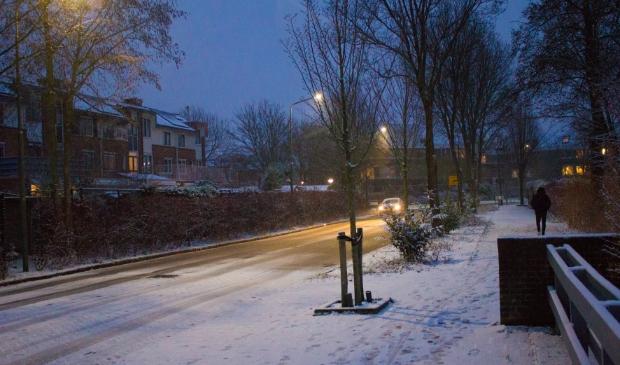 Duivendrecht in de sneeuw
