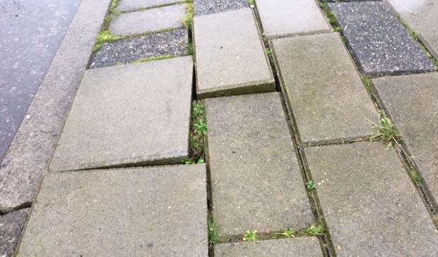 <p>Het voetpad langs het Liesbos is volgens De Vries gevaarlijk. &quot;Het ziet er in echt erger uit dan op een foto.&#39;</p><p><br></p>