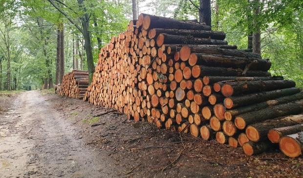 Duurzame houtoogst