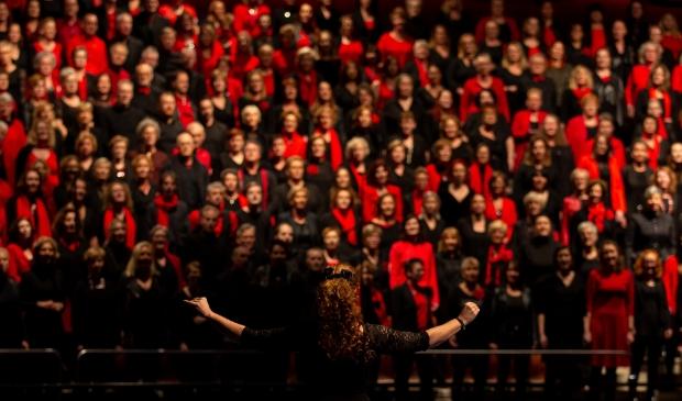 Gezamenlijk concert in 2019