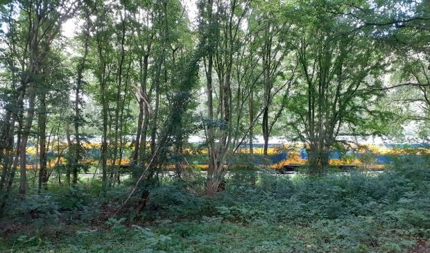 Het spoor loopt vlak langs het stuk grond van Utrechts Landschap