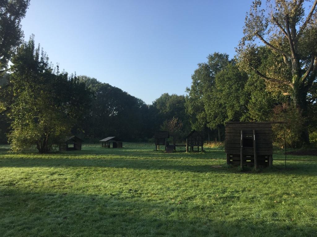 Mooi groot grasveld waar de kinderen op kunnen spelen en banjeren. Agnes Laurens © BDU media