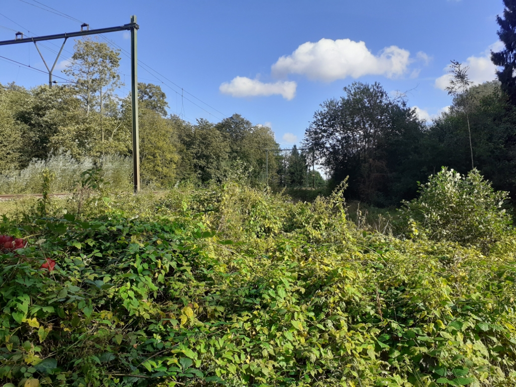 Het spoor loopt vlak langs het stuk grond van Utrechts Landschap Agnes Corbeij © BDU Media