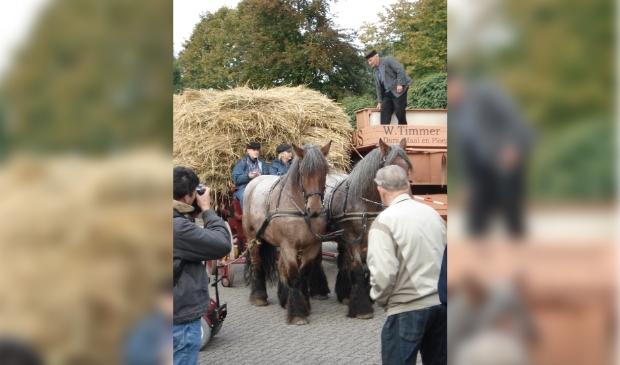De rogge wordt aangevoerd met paard en boerenwagen.