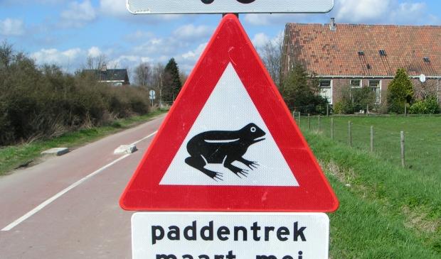 Waarschuwing voor padden