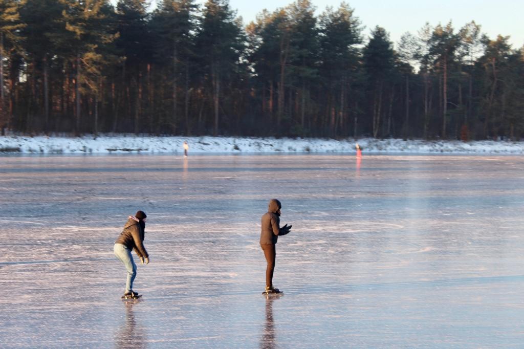 Op het vogelwater in Den Treek. Marcel koch © BDU media
