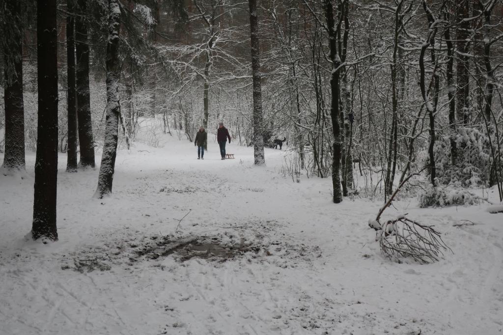 Wandelen bij Grote Bos. Mark Zwijnenburg © BDU