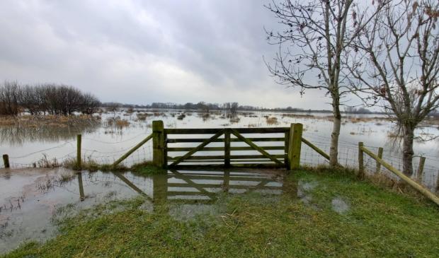 Hoog water in de Lek bij Schalkwijk in januari 2021; de uiterwaarden onder water (archieffoto) TS © BDU media