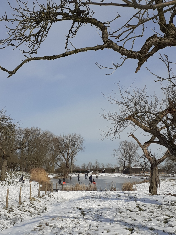 Laatse dag schaatsen bij Werk aan de Groeneweg Willy van Selm © BDU media