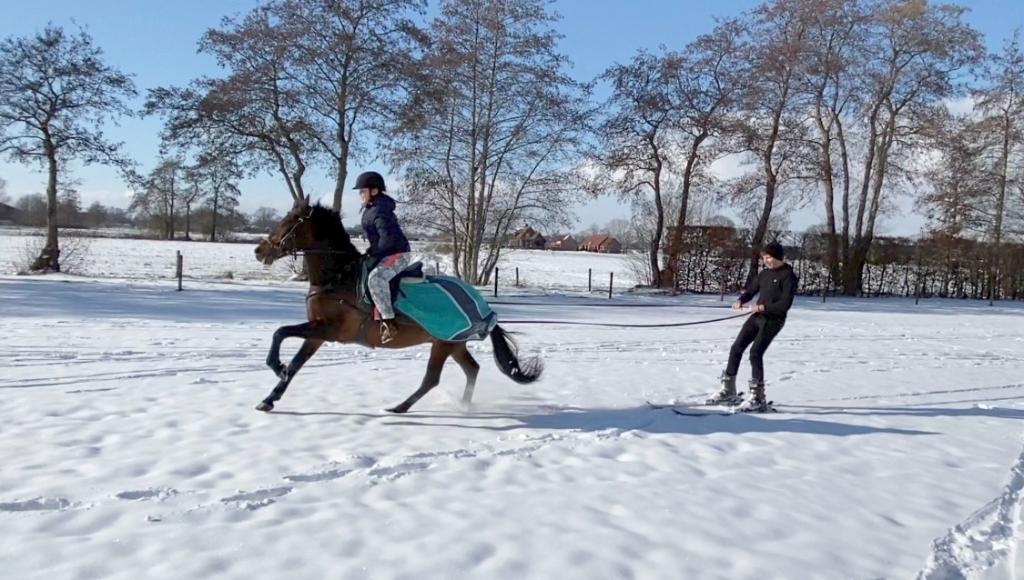 Manouk Korteweg met haar pony Capriolo Silber trekken haar zwager Gerjan van Essen op ski's door het met sneeuw bedekte weiland. Natasja Korteweg © BDU Media