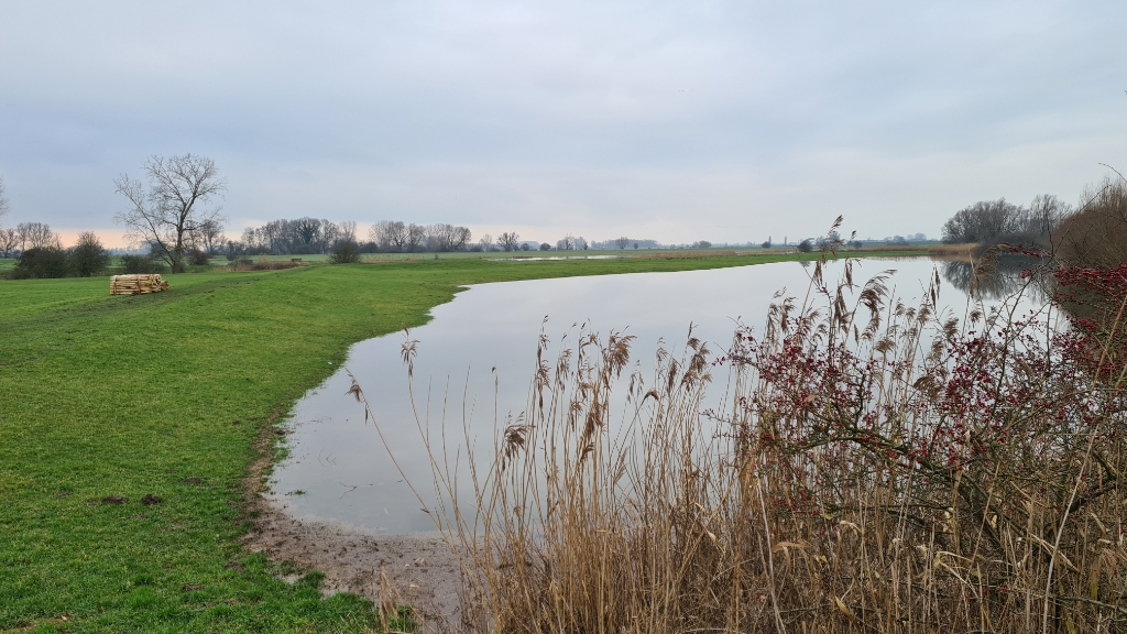 Wilco Willemse © BDU