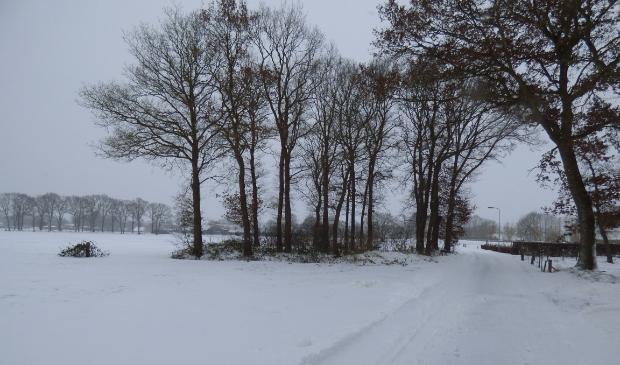 Winter in Putten