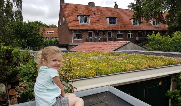 <p>In de provincie Utrecht ligt ongeveer 56 vierkante kilometer dak. </p>