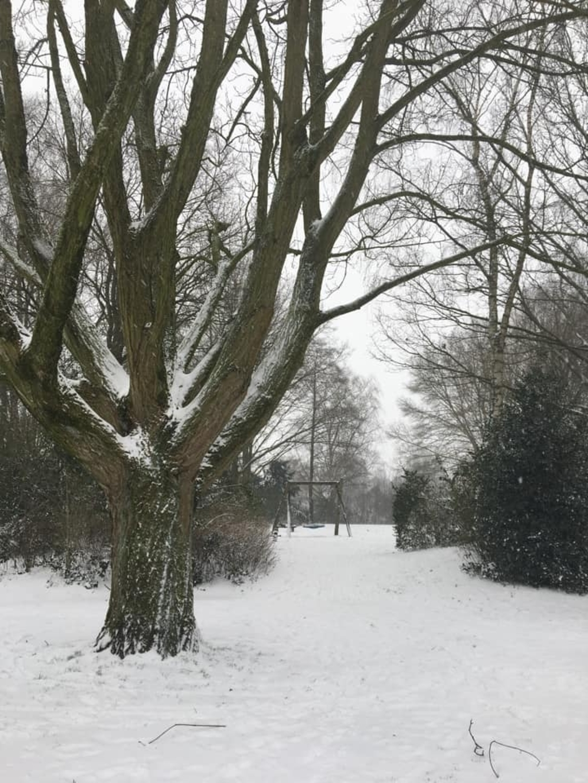 Park Wildenburg Nell Scheen - Floris © BDU media