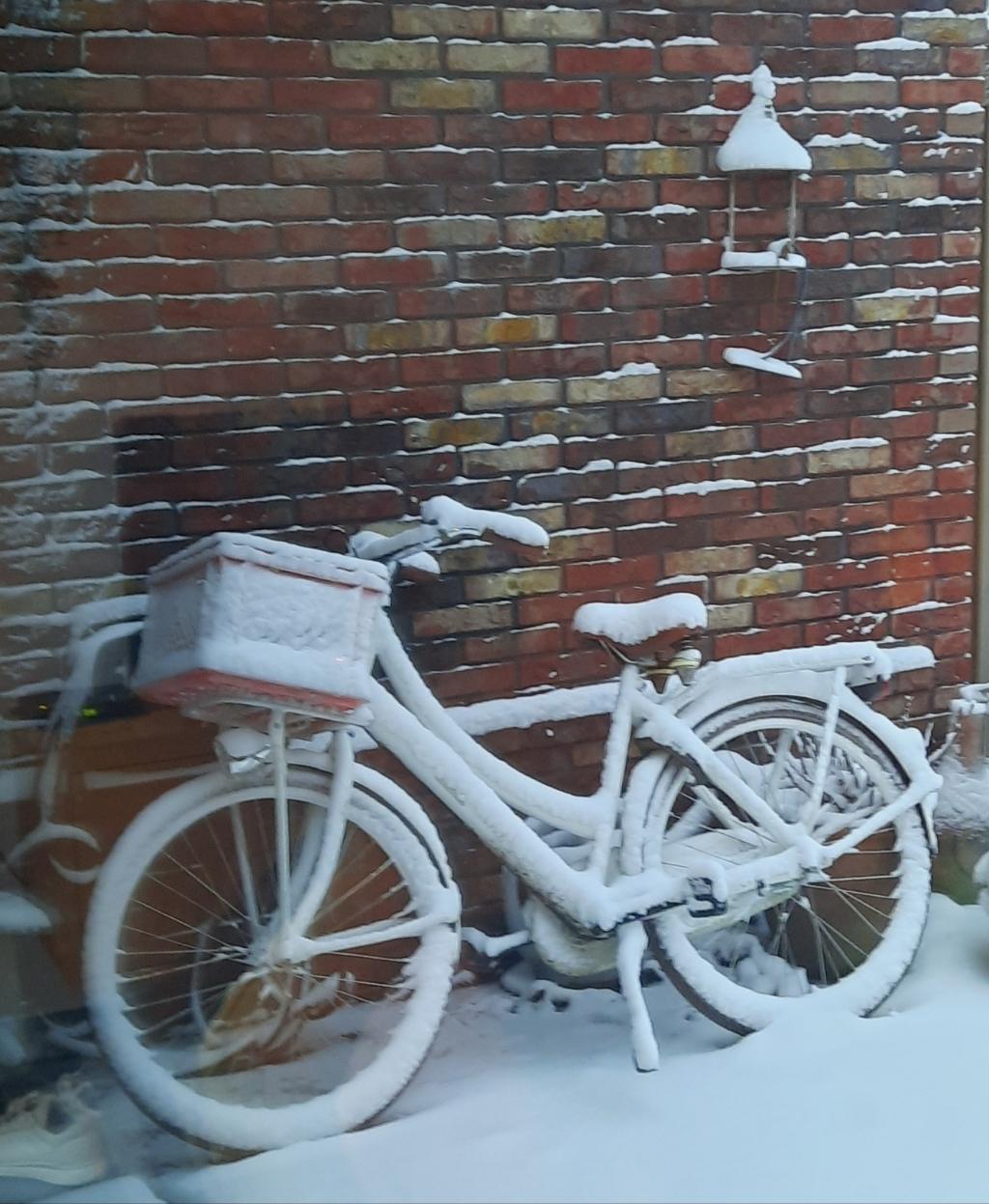 Een sneeuwfiets.  Ellen van Beeck © BDU media