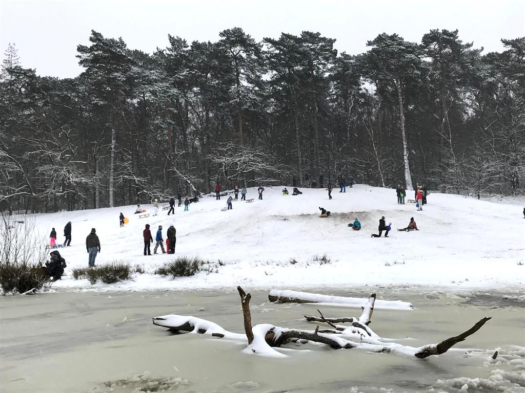 Slee-pret bij zandduin in het Grote Bos. Mark Zwijnenburg © BDU