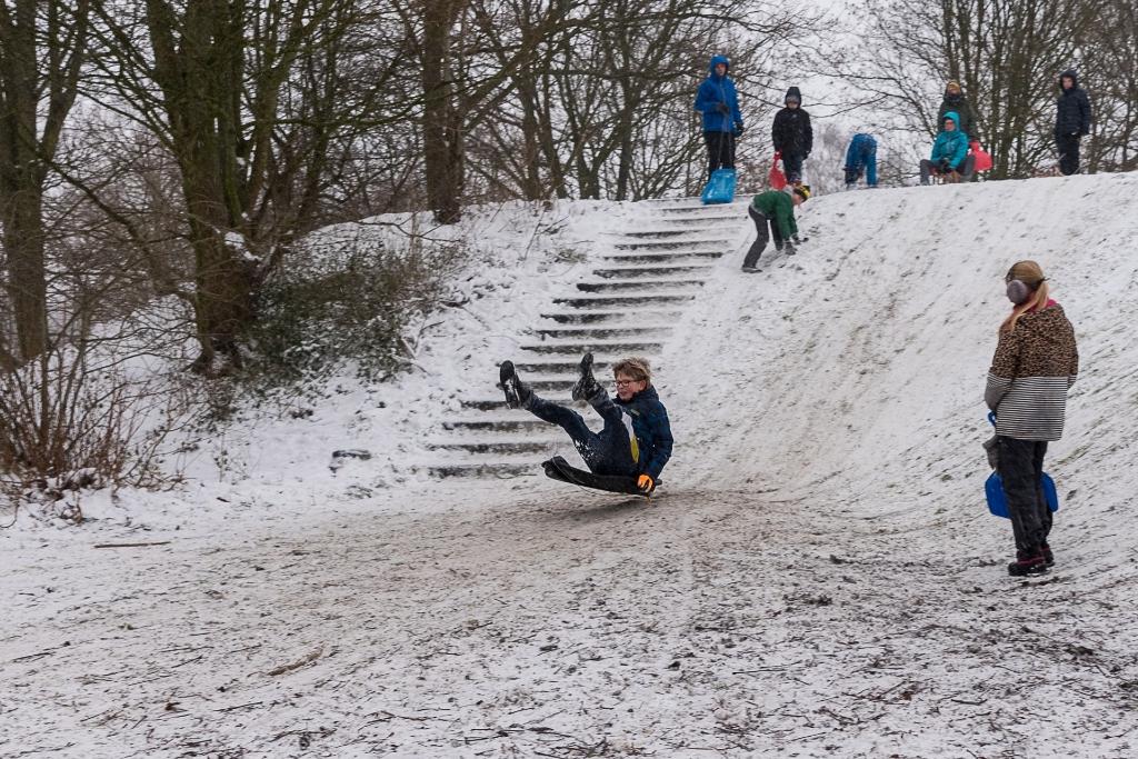 winters Houten Rene van den Brandt © BDU media
