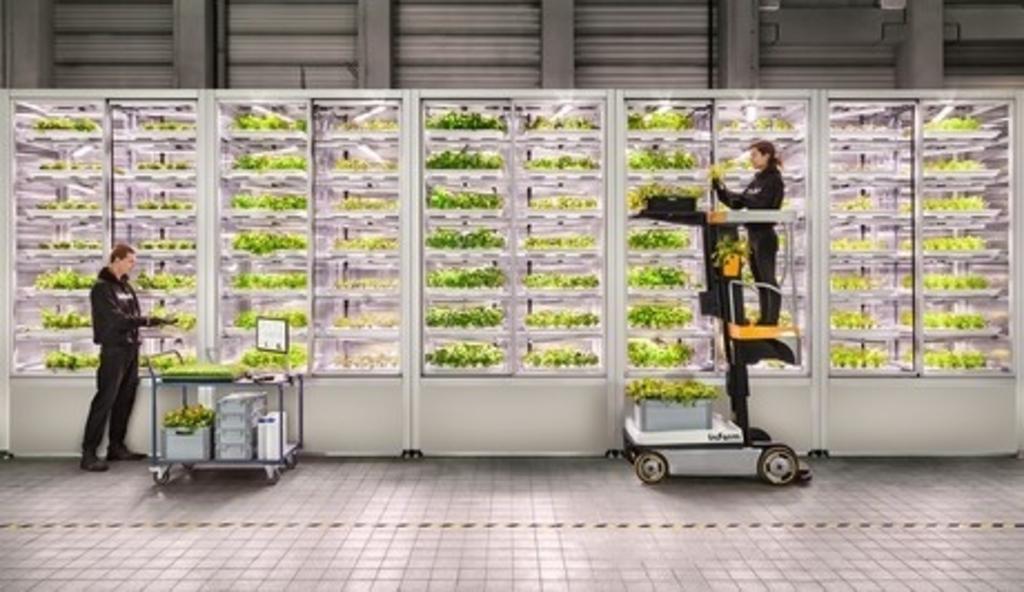 Het Duitse 'vertical farming' bedrijf Infarm Eigen foto © BDU media