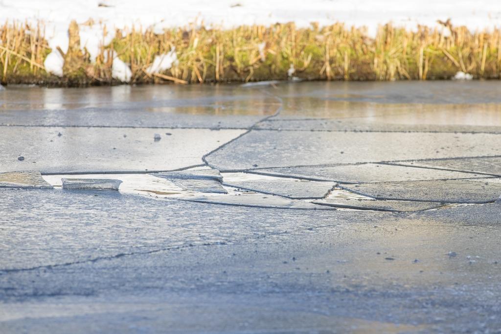 <p>Het ijs op de Stroombergvijver vertoonde wakken en scheuren.</p> Ted Walker Fotografie © BDU Media